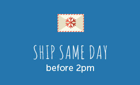 """A message that reads """"ship same day before 2pm""""."""