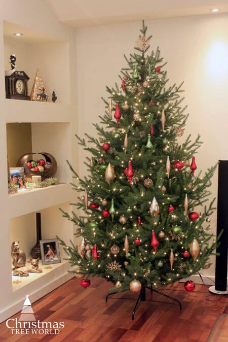 Ultra mountain pine christmas tree